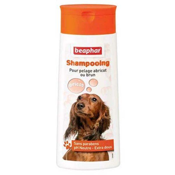 Shampooing pour chien pelage abricot ou brun 250ml 3195 – Beaphar