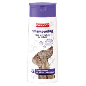 Shampooing pour chien anti-odeurs 250ml 3423 – Beaphar